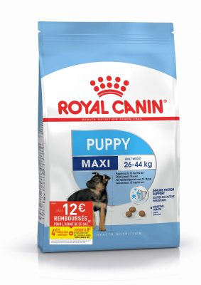 Puppy Maxi