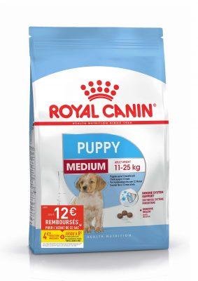 Puppy Medium