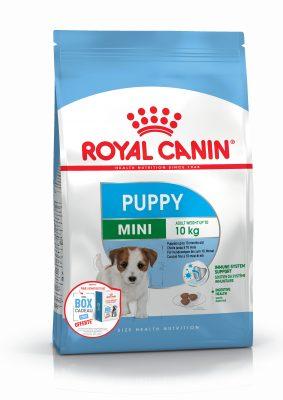 https://www.wikichien.fr/wp-content/uploads/sites/4/21_packshot-puppy-mini_coffret-chiot_p4-s0000722-283x400.jpg