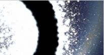 https://www.wikichien.fr/wp-content/uploads/sites/4/capture_d___ecran_2013_06_18_a_11-05-53.png