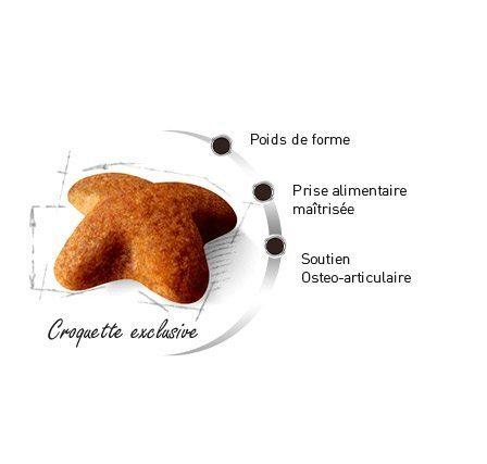 Croquette du Beagle