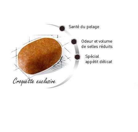 Croquette du Bichon Maltais