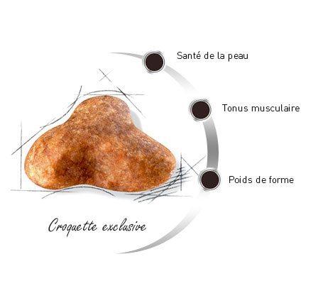 Croquette du Carlin