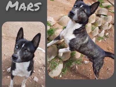 Mars 9f796c33-8bcf-4fcd-8ab4-778ff9369df5