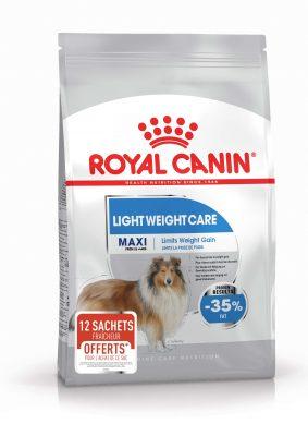 Maxi Light Weight Care + 12 sachets fraîcheur